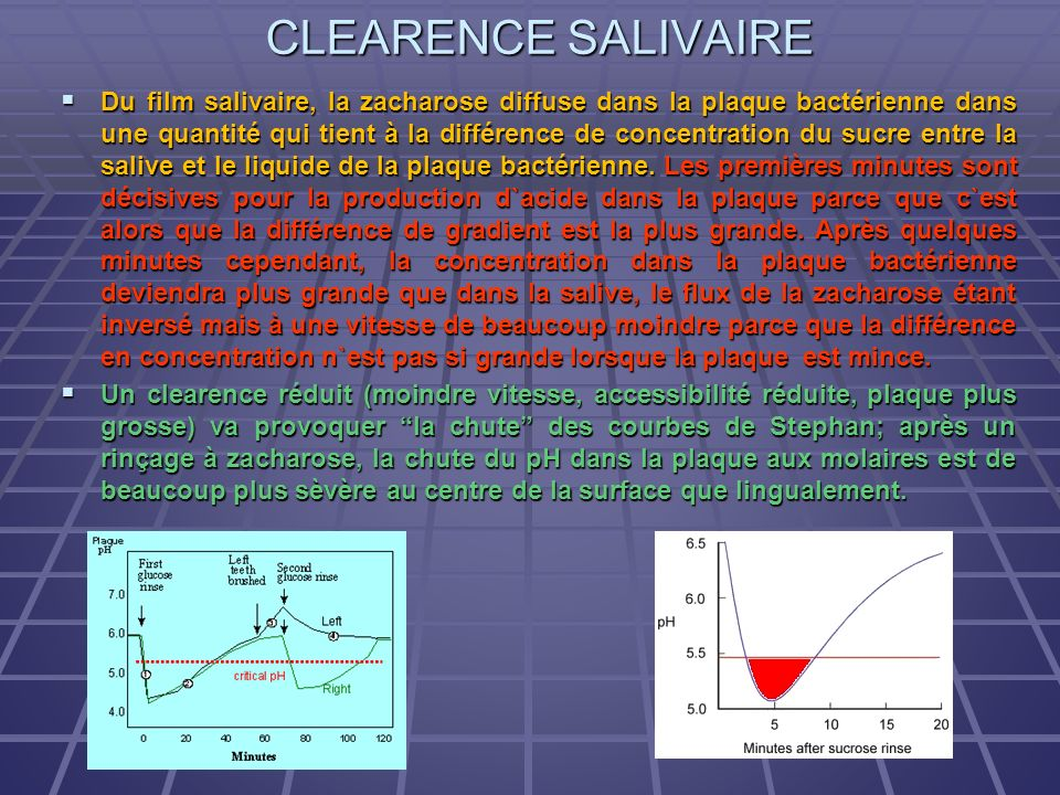 CLEARENCE SALIVAIRE