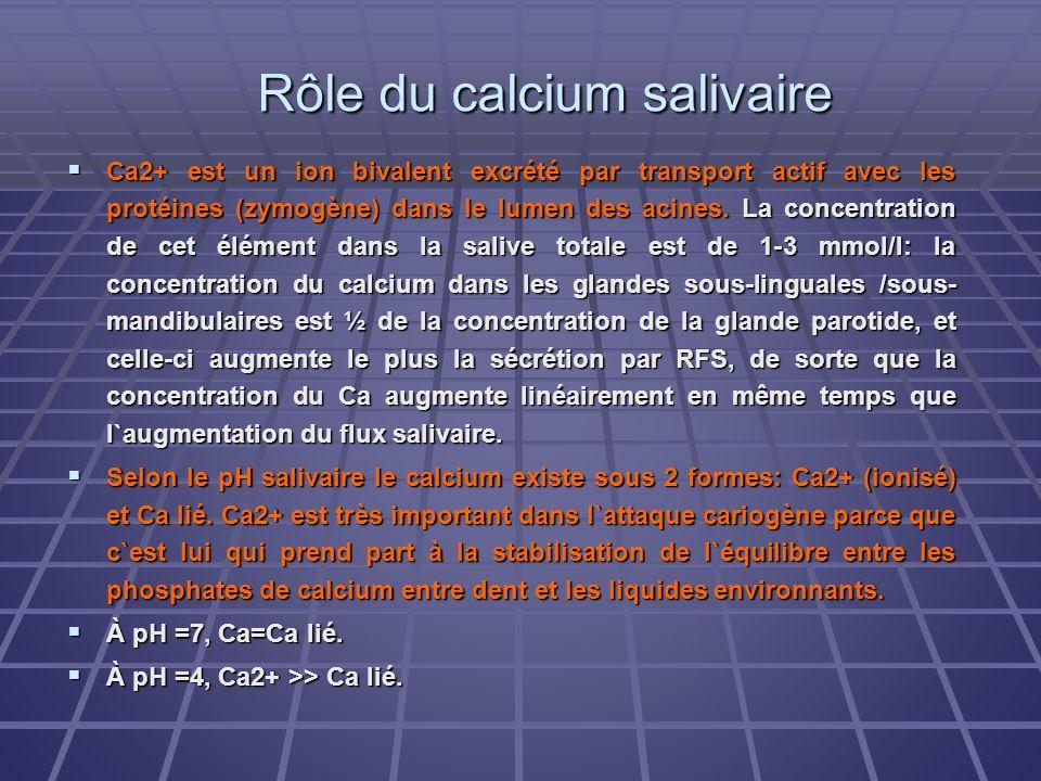 Rôle du calcium salivaire