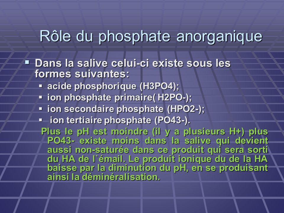 Rôle du phosphate anorganique