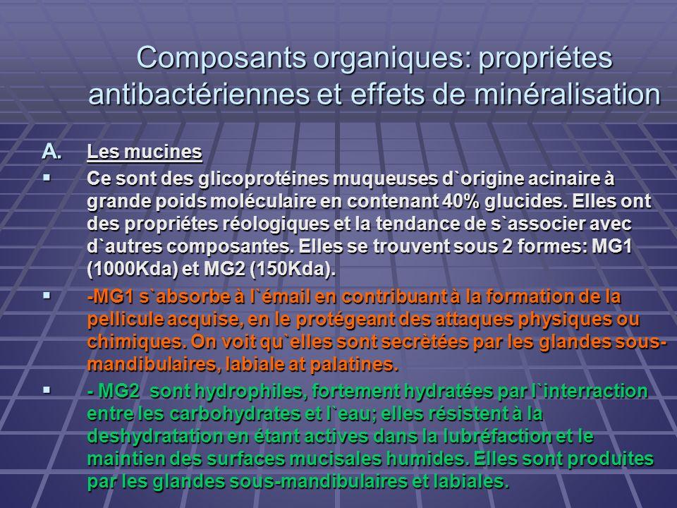 Composants organiques: propriétes antibactériennes et effets de minéralisation