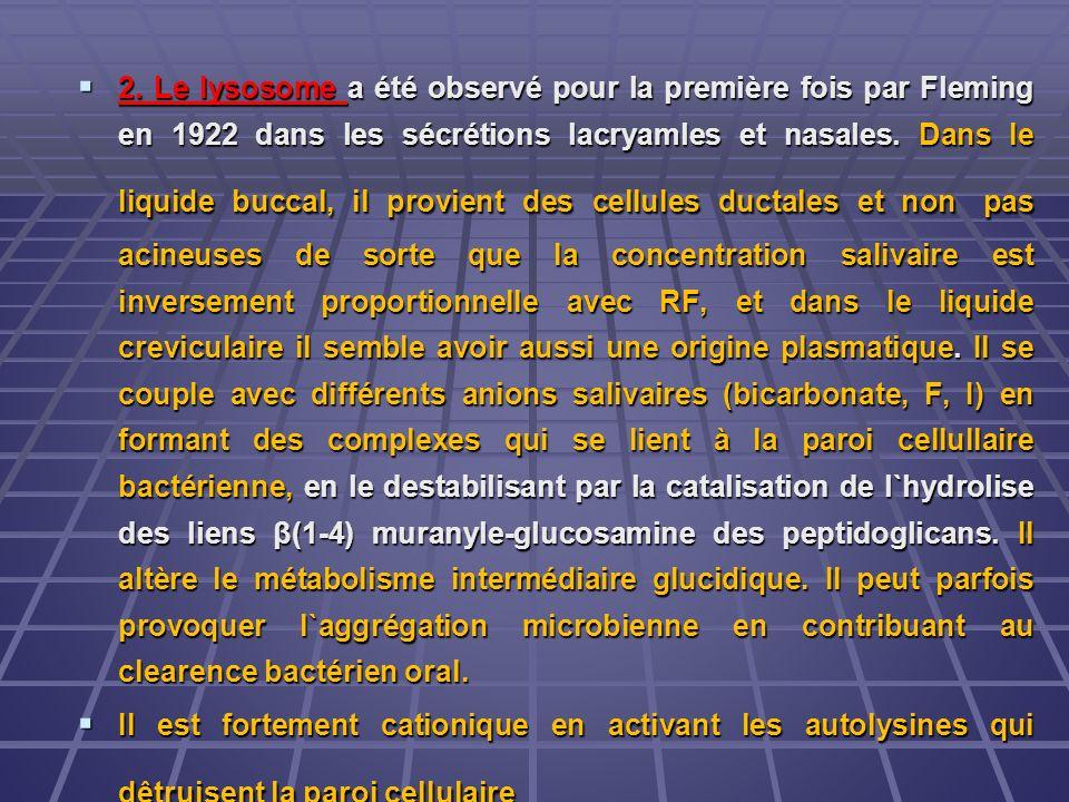 2. Le lysosome a été observé pour la première fois par Fleming en 1922 dans les sécrétions lacryamles et nasales. Dans le liquide buccal, il provient des cellules ductales et non pas acineuses de sorte que la concentration salivaire est inversement proportionnelle avec RF, et dans le liquide creviculaire il semble avoir aussi une origine plasmatique. Il se couple avec différents anions salivaires (bicarbonate, F, I) en formant des complexes qui se lient à la paroi cellullaire bactérienne, en le destabilisant par la catalisation de l`hydrolise des liens β(1-4) muranyle-glucosamine des peptidoglicans. Il altère le métabolisme intermédiaire glucidique. Il peut parfois provoquer l`aggrégation microbienne en contribuant au clearence bactérien oral.
