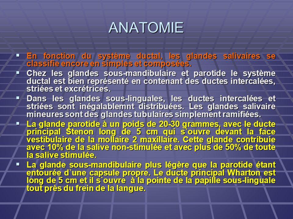 ANATOMIE En fonction du système ductal, les glandes salivaires se classifie encore en simples et composées.