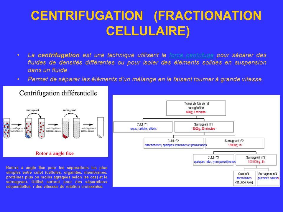 CENTRIFUGATION (FRACTIONATION CELLULAIRE)
