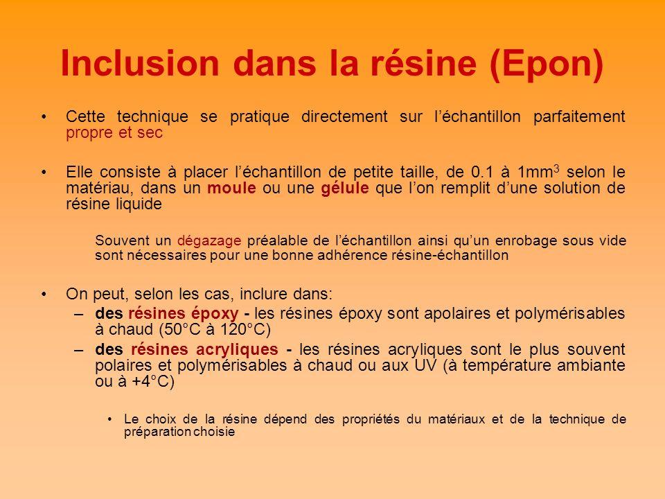 Inclusion dans la résine (Epon)
