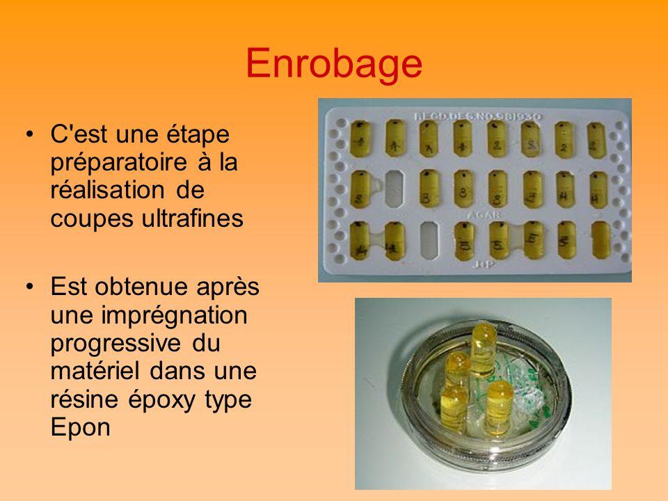 Enrobage C est une étape préparatoire à la réalisation de coupes ultrafines.