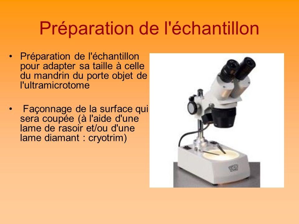 Préparation de l échantillon
