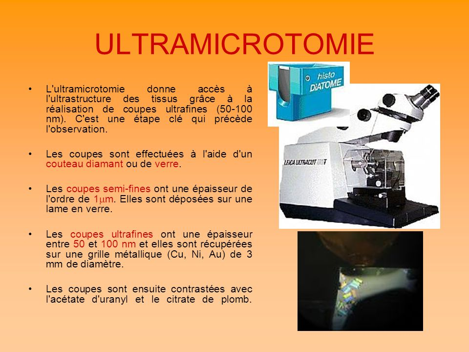 ULTRAMICROTOMIE