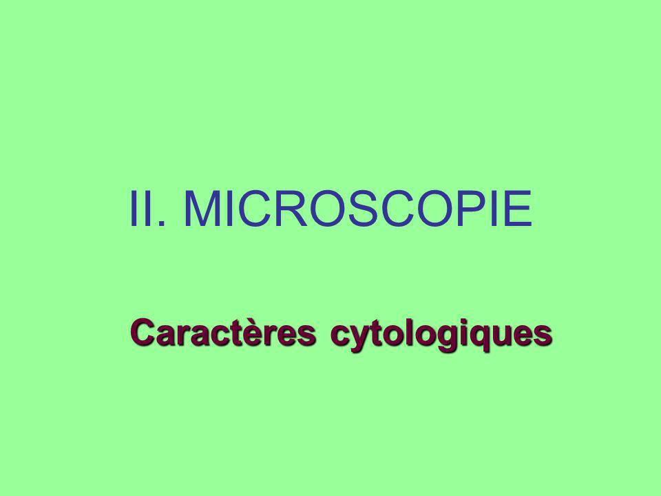 Caractères cytologiques
