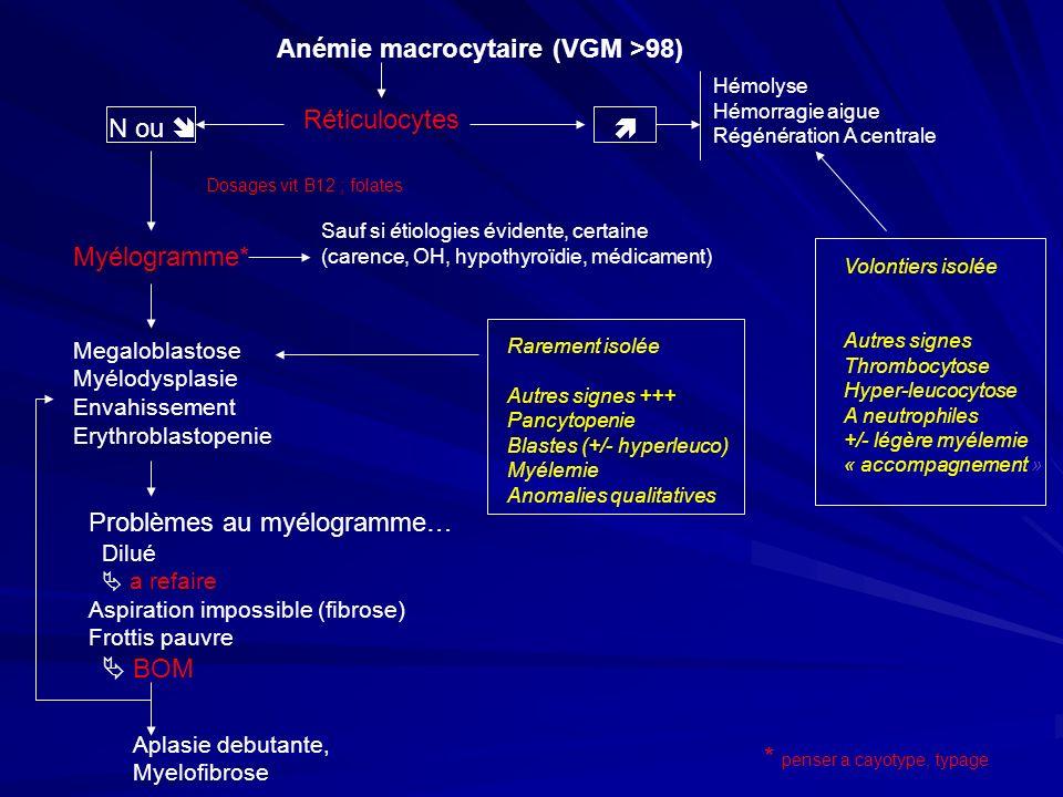 Anémie macrocytaire (VGM >98)