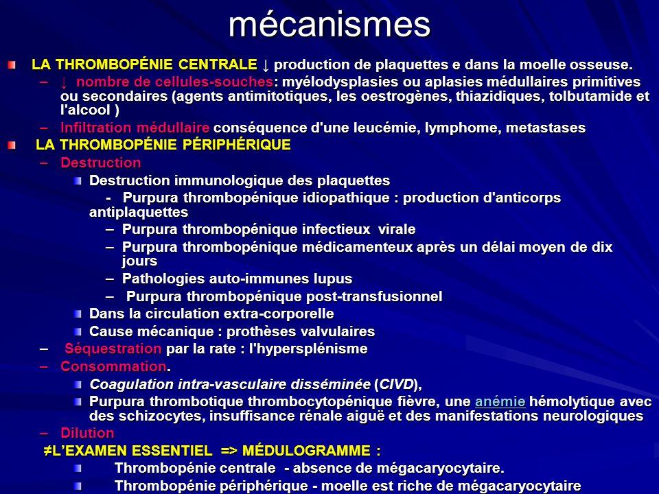 mécanismes LA THROMBOPÉNIE CENTRALE ↓ production de plaquettes e dans la moelle osseuse.