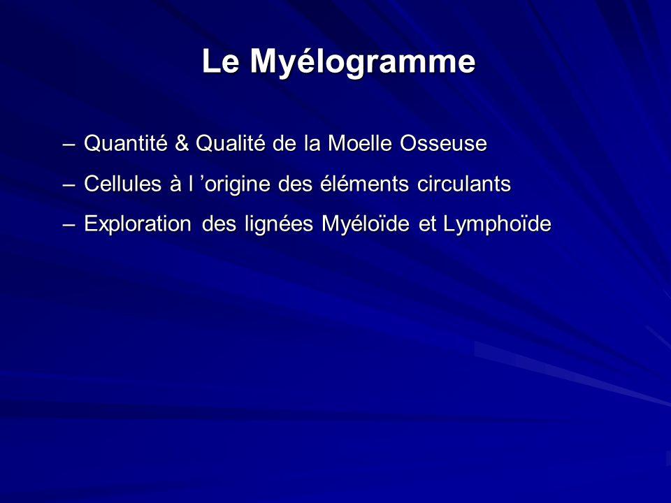 Le Myélogramme Quantité & Qualité de la Moelle Osseuse