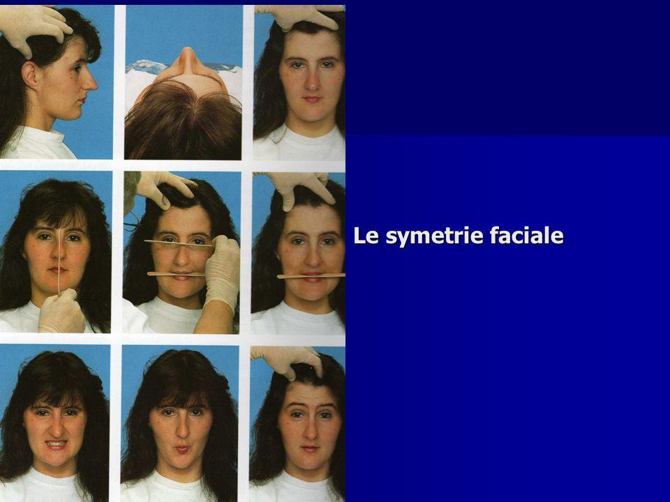 Le symetrie faciale