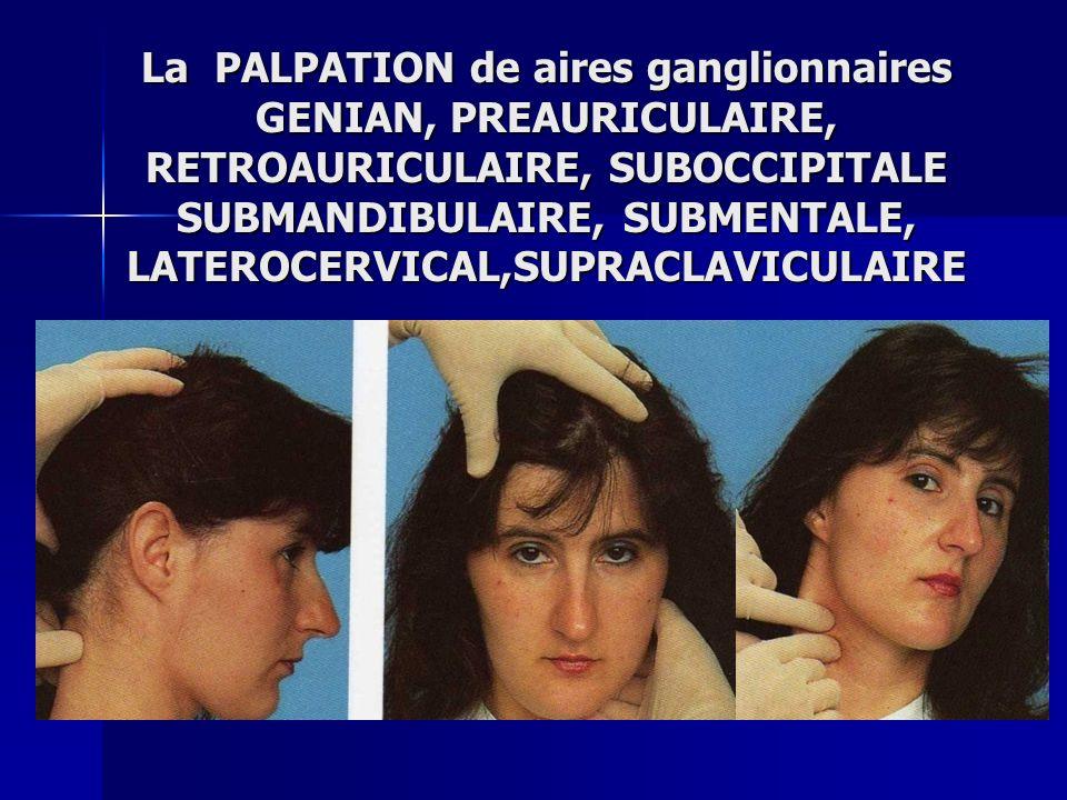 La PALPATION de aires ganglionnaires GENIAN, PREAURICULAIRE, RETROAURICULAIRE, SUBOCCIPITALE SUBMANDIBULAIRE, SUBMENTALE, LATEROCERVICAL,SUPRACLAVICULAIRE