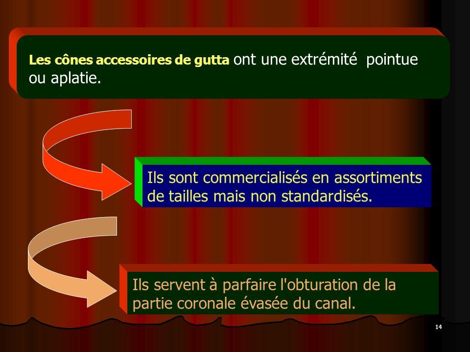 Les cônes accessoires de gutta ont une extrémité pointue ou aplatie.
