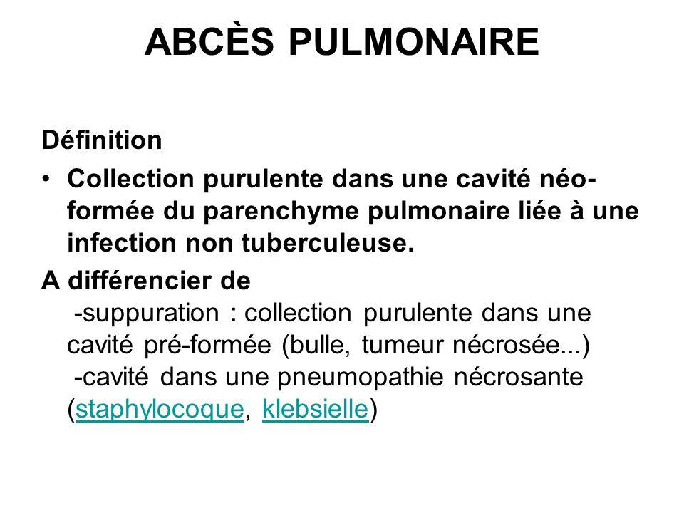 ABCÈS PULMONAIRE Définition