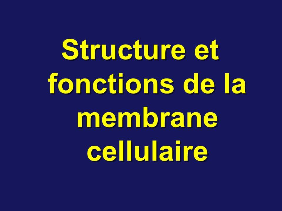 Structure et fonctions de la membrane cellulaire