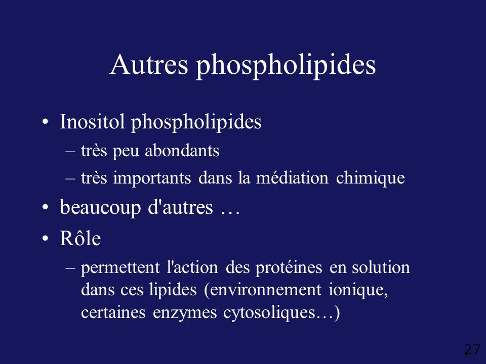 Autres phospholipides