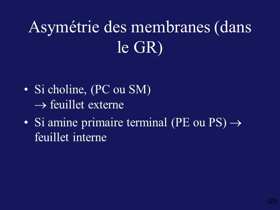 Asymétrie des membranes (dans le GR)