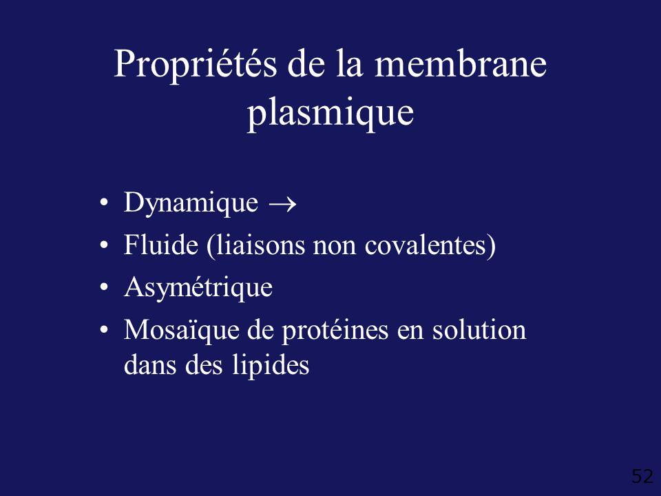 Propriétés de la membrane plasmique