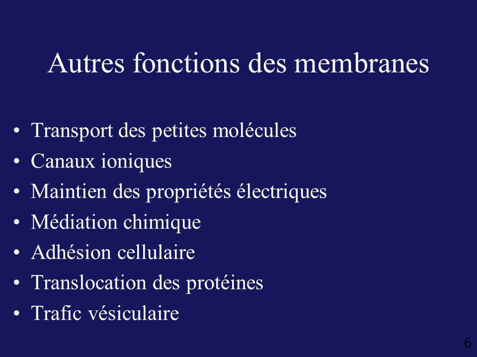 Autres fonctions des membranes
