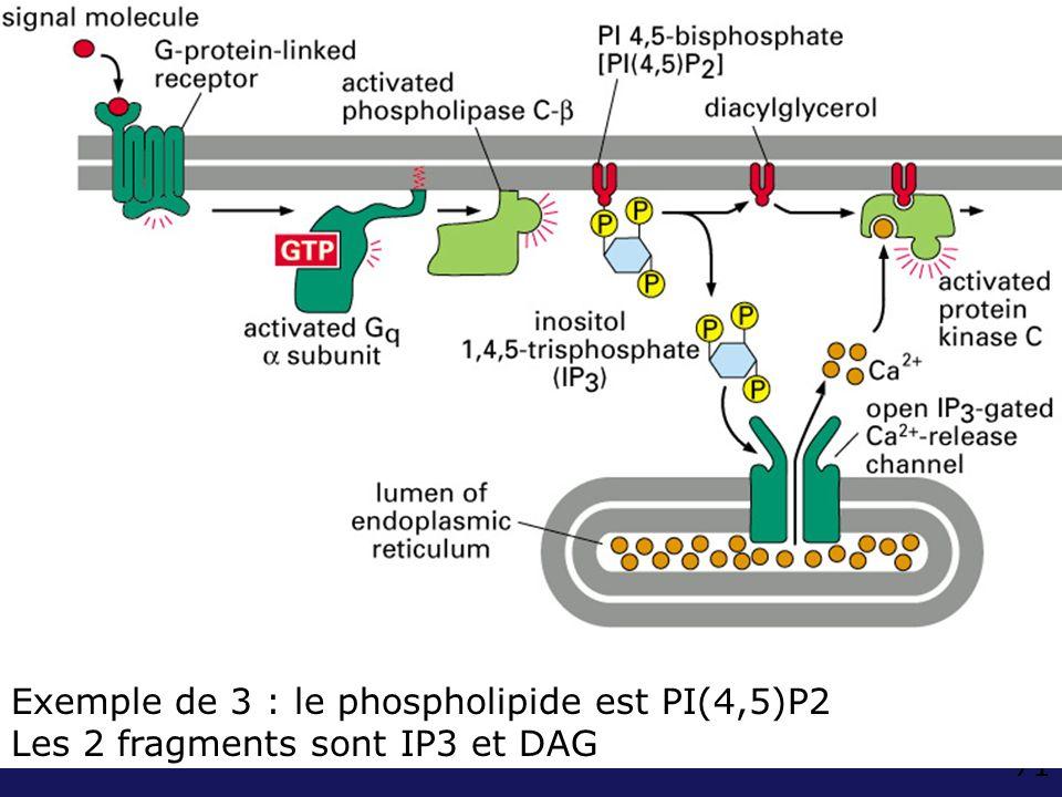 Fig 15-36 exemple de 10-15 (B) PIP2 DAG