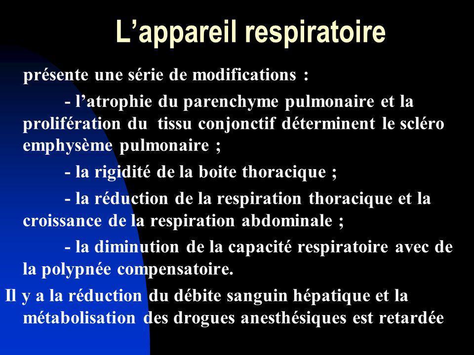 L'appareil respiratoire