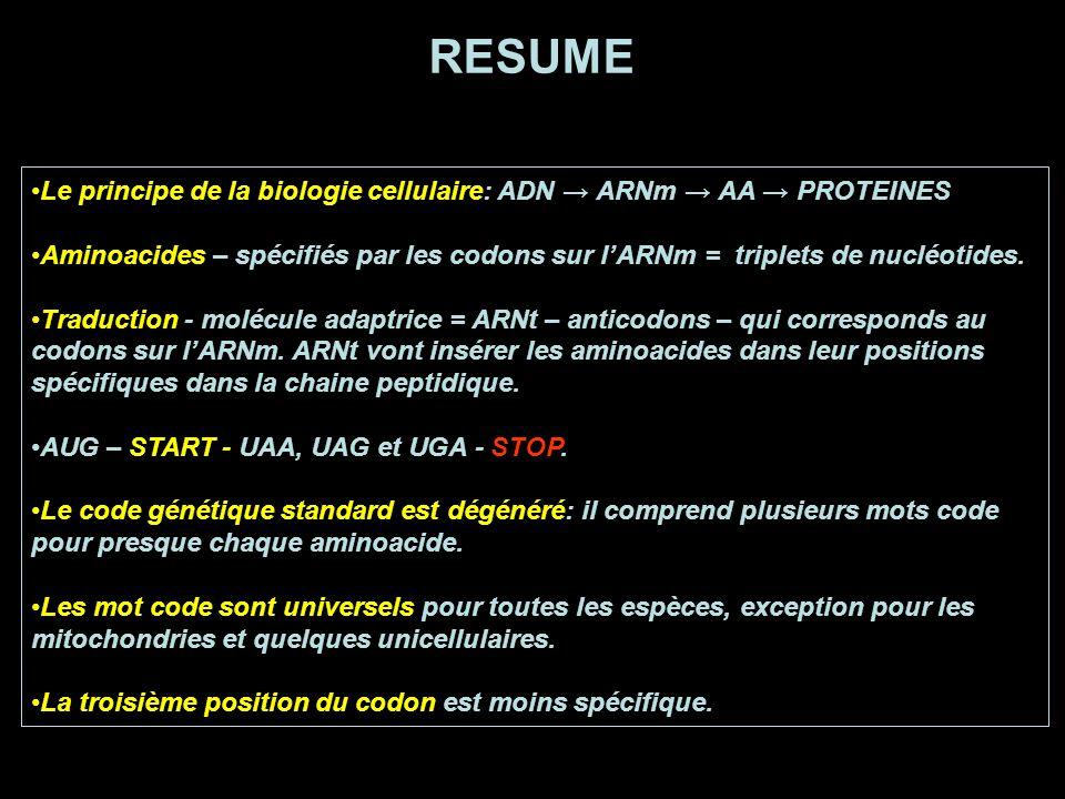 RESUME Le principe de la biologie cellulaire: ADN → ARNm → AA → PROTEINES.