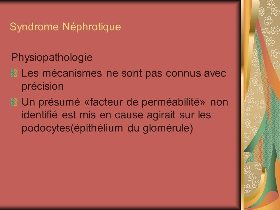 Syndrome Néphrotique Physiopathologie. Les mécanismes ne sont pas connus avec précision.