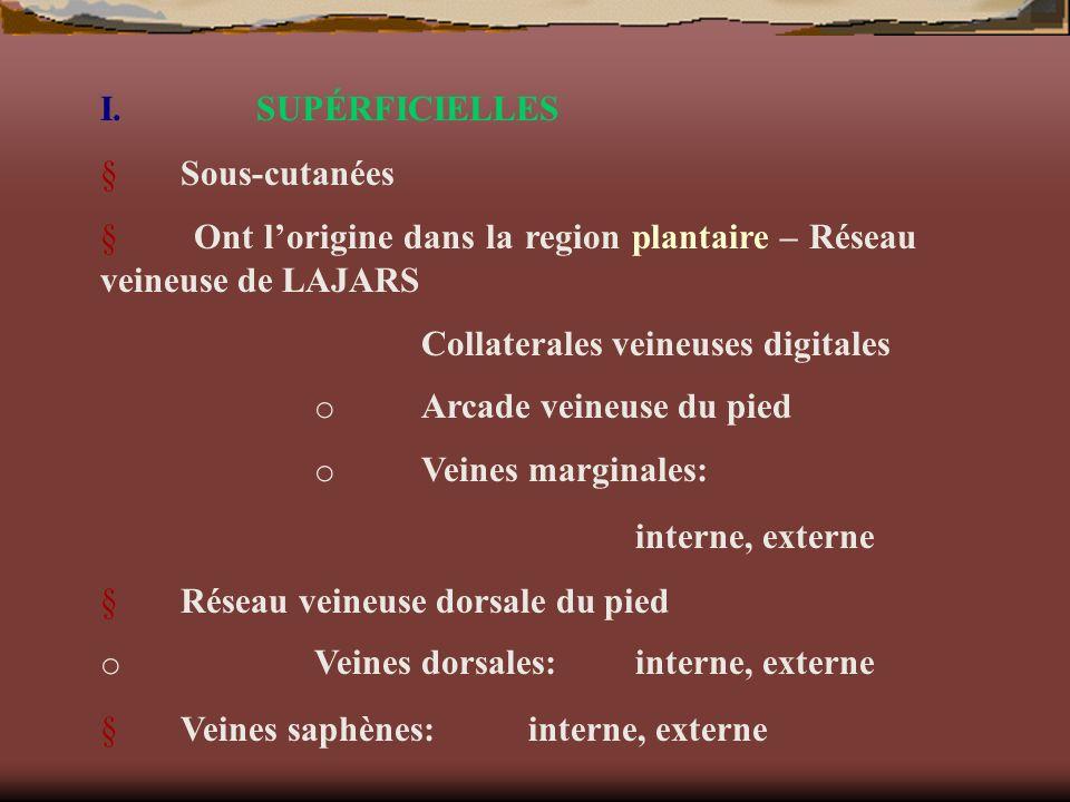I. SUPÉRFICIELLES § Sous-cutanées. § Ont l'origine dans la region plantaire – Réseau veineuse de LAJARS.