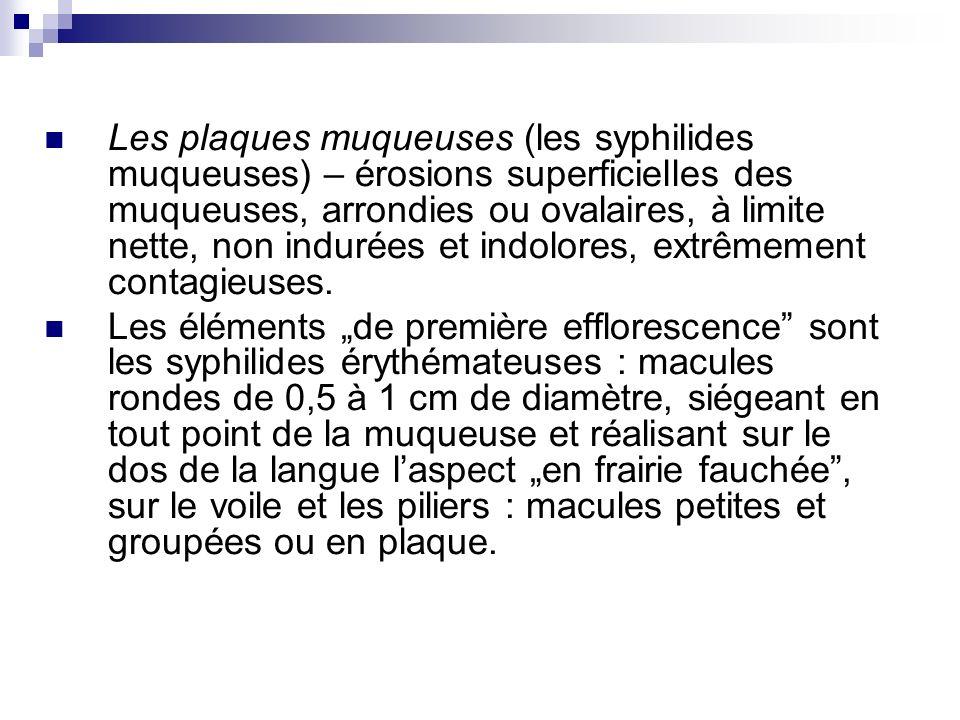 Les plaques muqueuses (les syphilides muqueuses) – érosions superficielles des muqueuses, arrondies ou ovalaires, à limite nette, non indurées et indolores, extrêmement contagieuses.