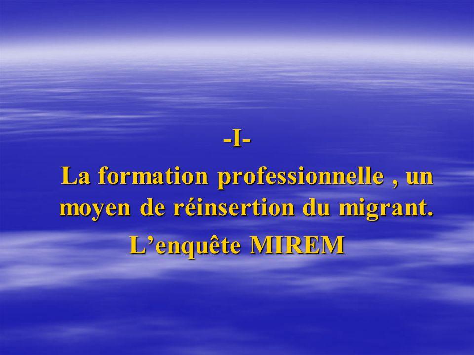 La formation professionnelle , un moyen de réinsertion du migrant.