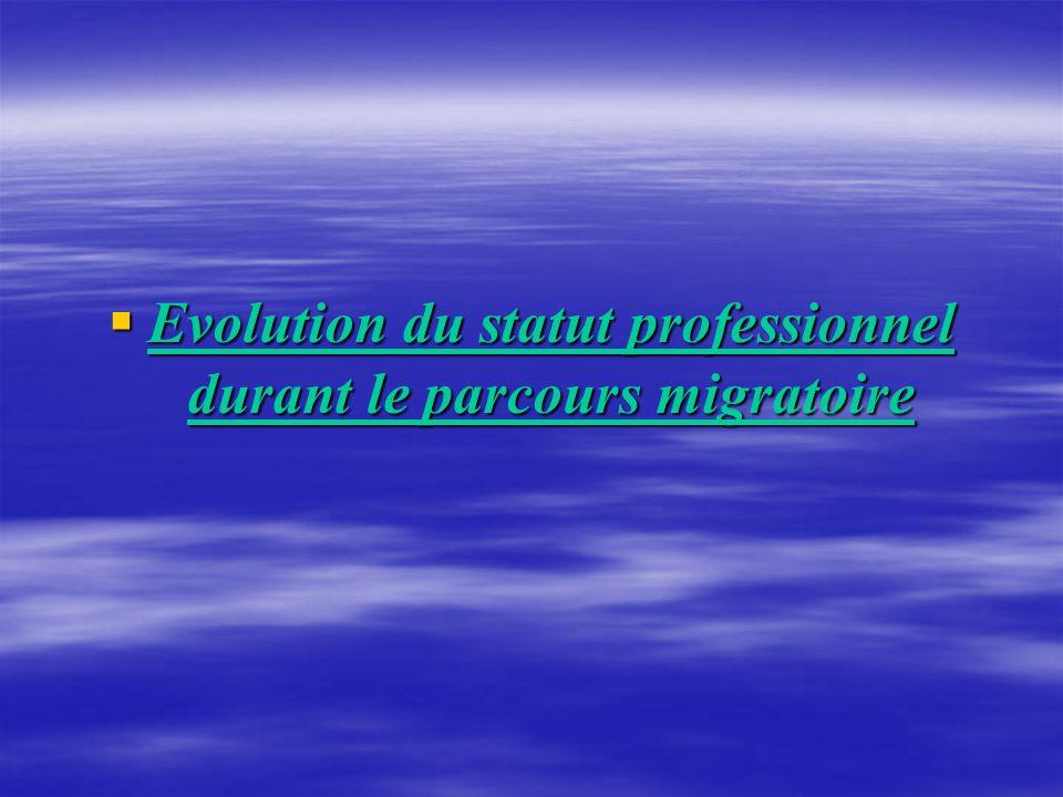 Evolution du statut professionnel durant le parcours migratoire