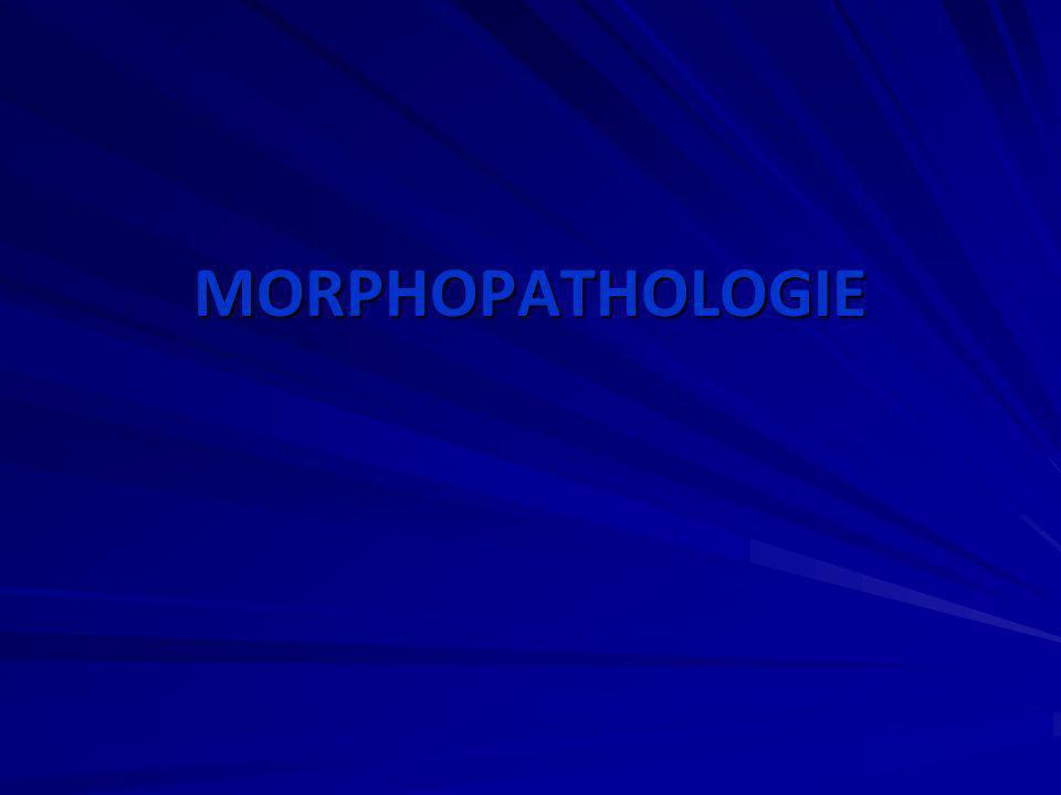 MORPHOPATHOLOGIE