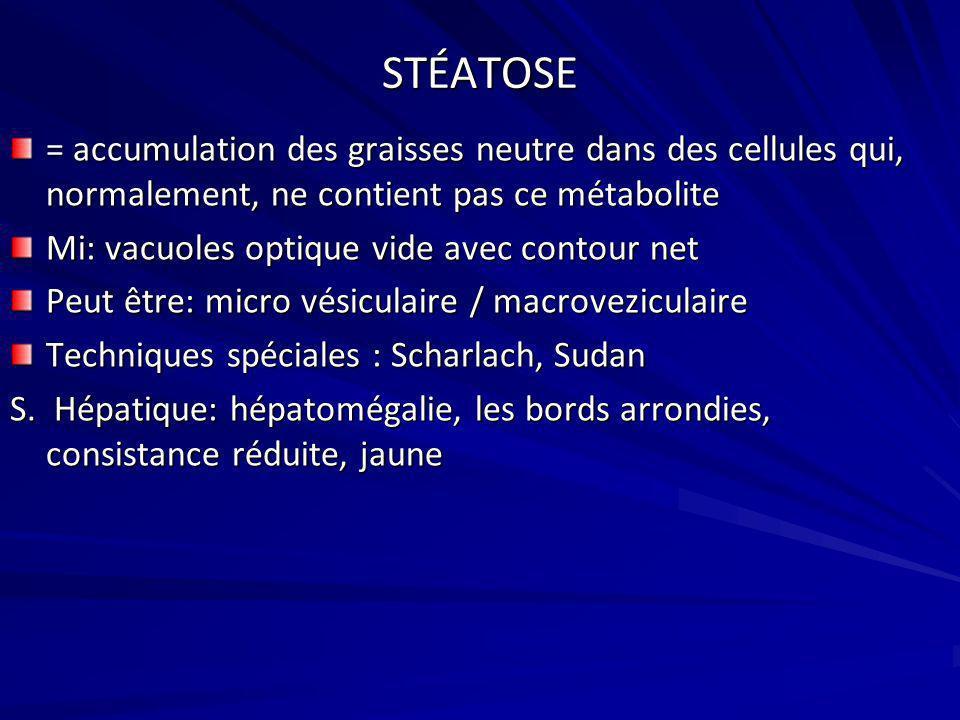 STÉATOSE = accumulation des graisses neutre dans des cellules qui, normalement, ne contient pas ce métabolite.
