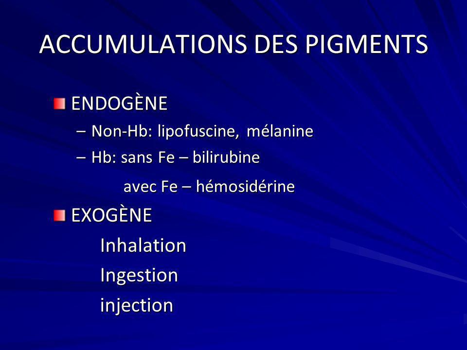 ACCUMULATIONS DES PIGMENTS