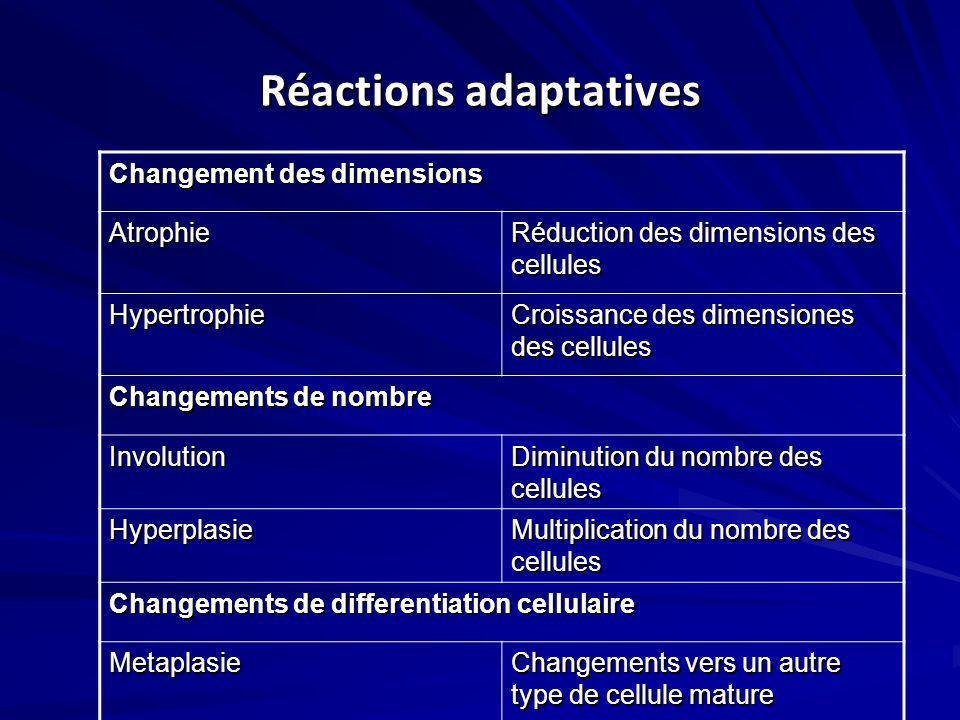 Réactions adaptatives
