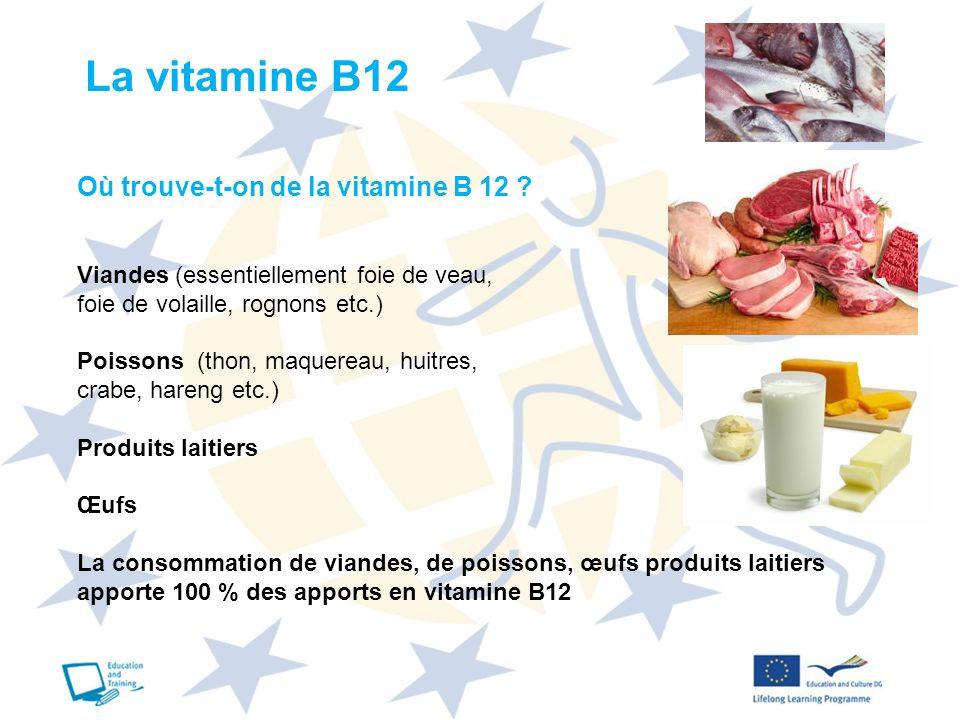 La vitamine B12 Où trouve-t-on de la vitamine B 12