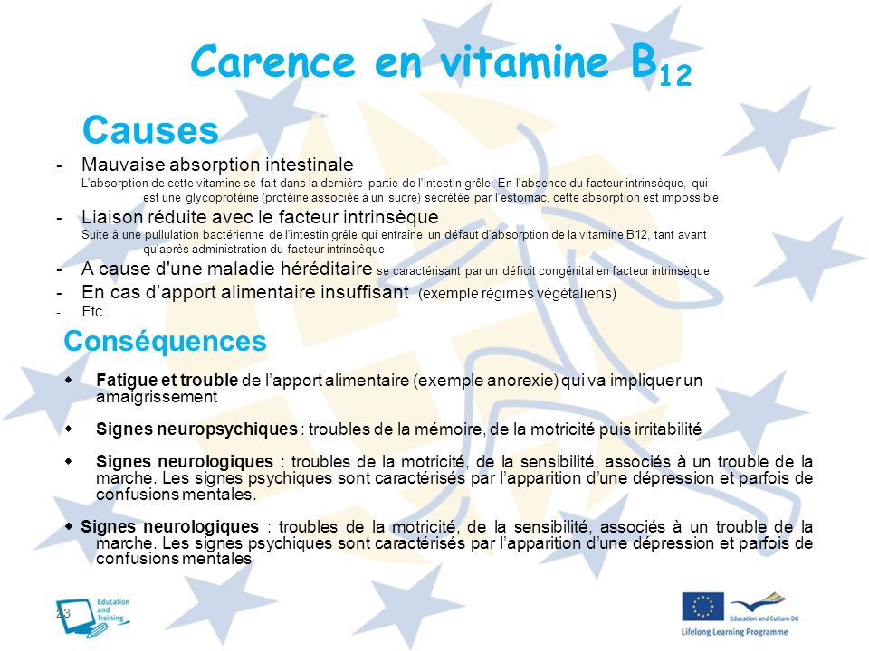 Carence en vitamine B12 Causes Conséquences