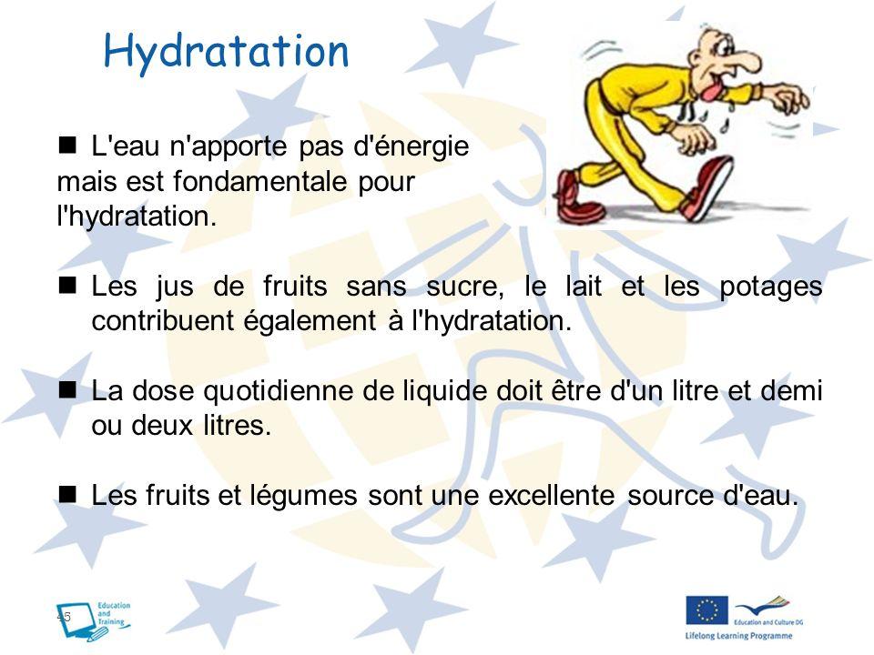 Hydratation L eau n apporte pas d énergie mais est fondamentale pour