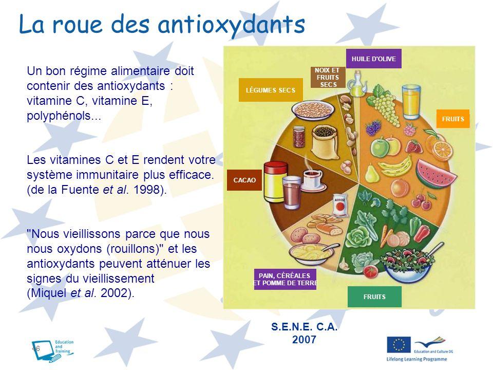 La roue des antioxydants