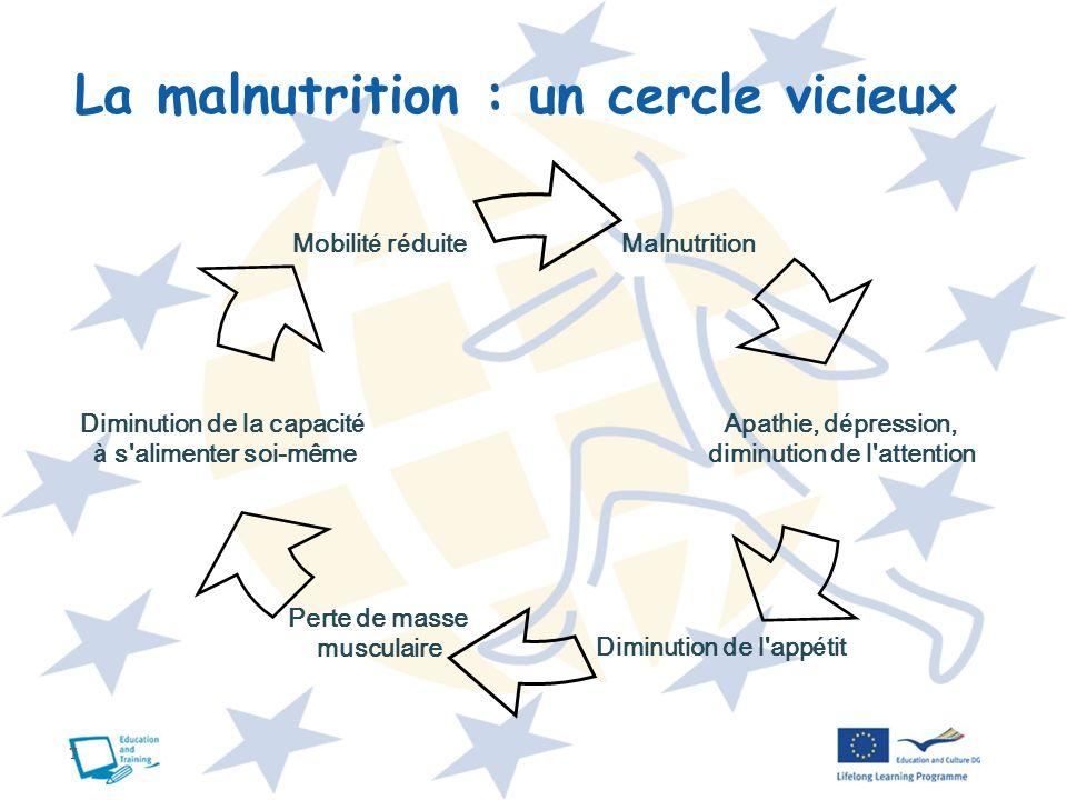 La malnutrition : un cercle vicieux