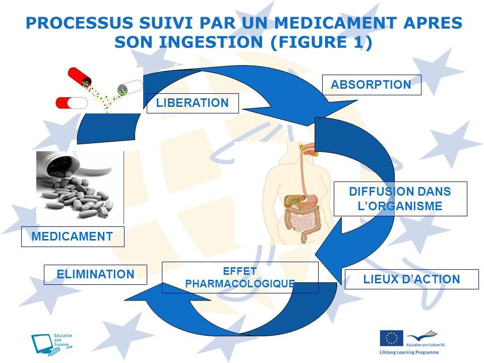 PROCESSUS SUIVI PAR UN MEDICAMENT APRES SON INGESTION (FIGURE 1)