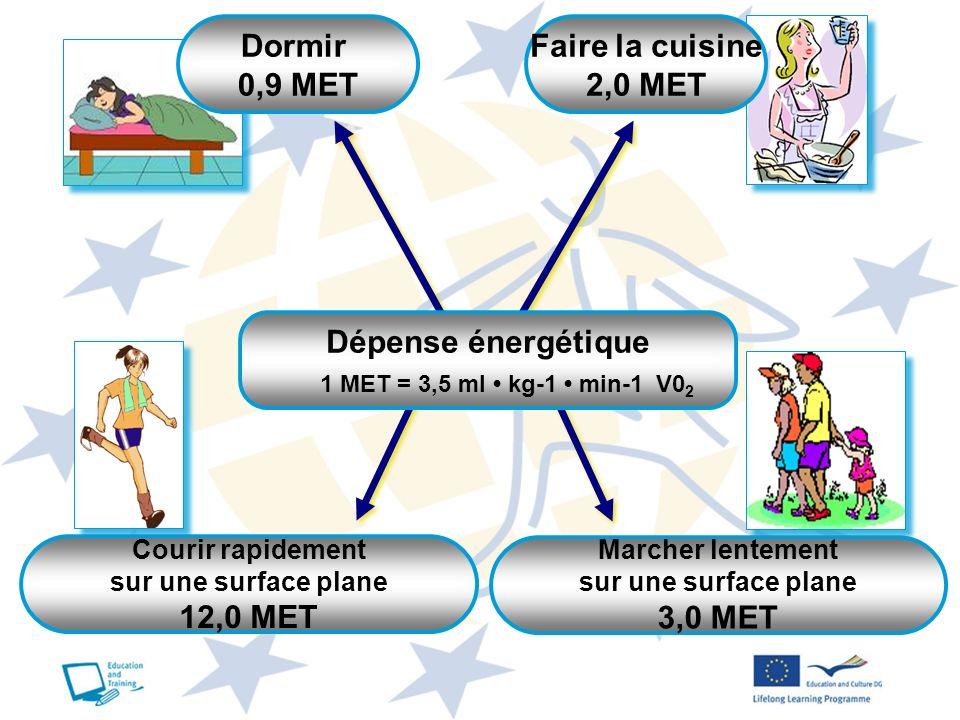Dormir 0,9 MET Faire la cuisine 2,0 MET Dépense énergétique 12,0 MET