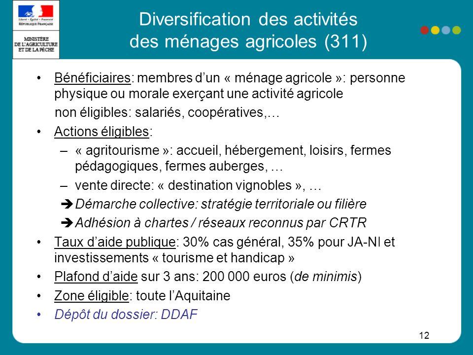 Diversification des activités des ménages agricoles (311)