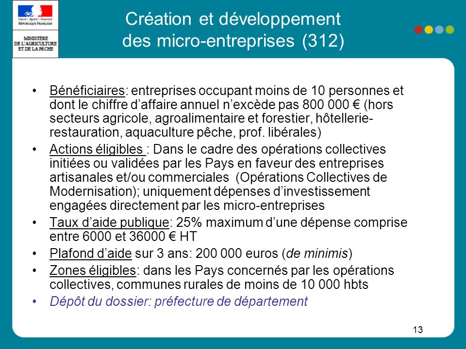 Création et développement des micro-entreprises (312)