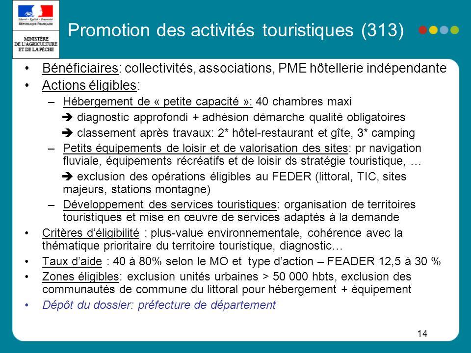 Promotion des activités touristiques (313)