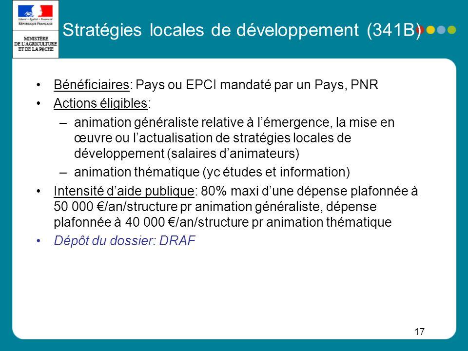 Stratégies locales de développement (341B)