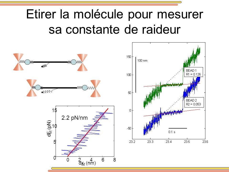 Etirer la molécule pour mesurer sa constante de raideur
