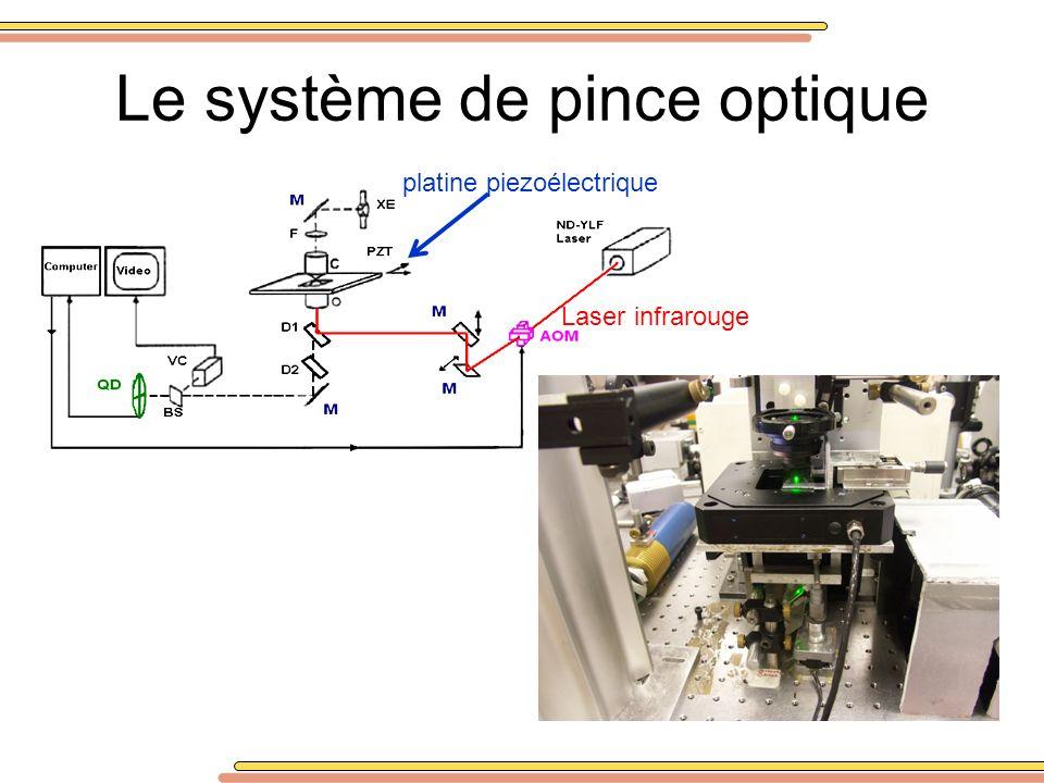 Le système de pince optique