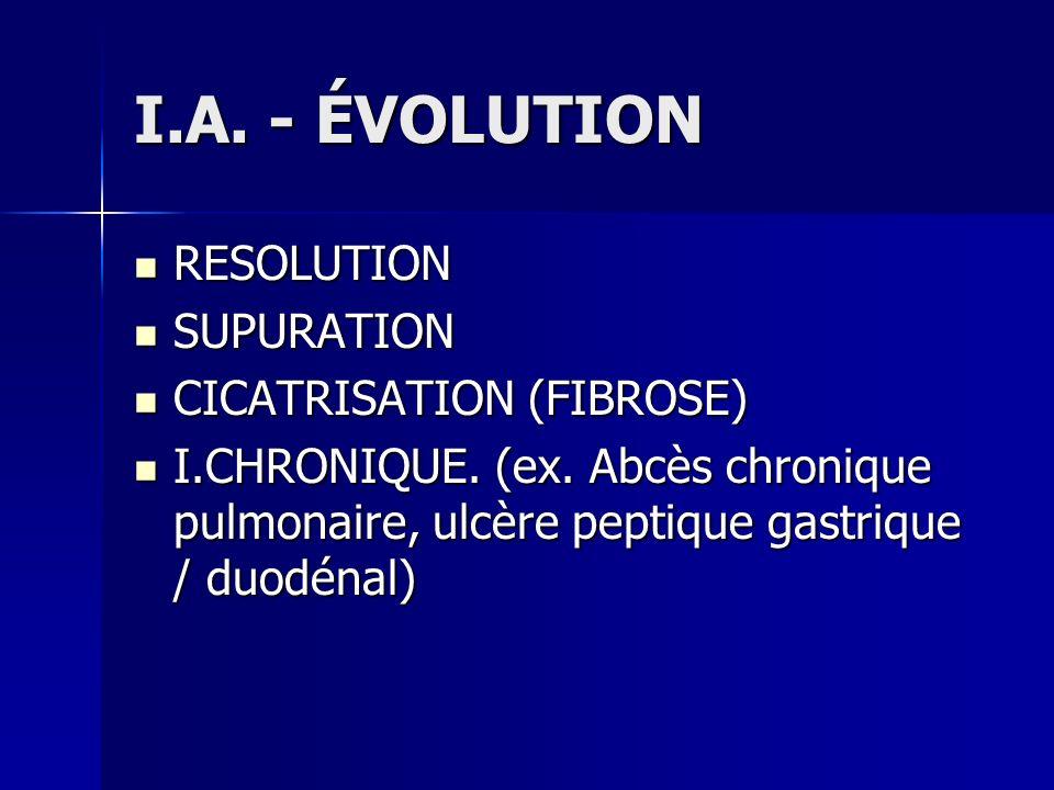 I.A. - ÉVOLUTION RESOLUTION SUPURATION CICATRISATION (FIBROSE)